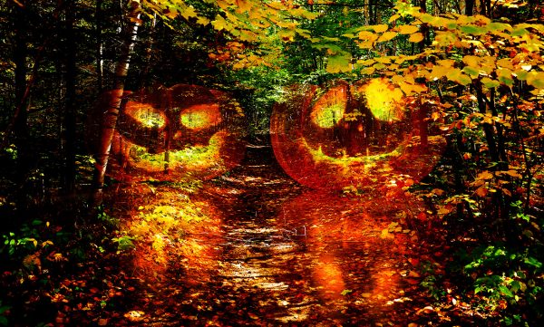 Halloween-Scary-Wood-