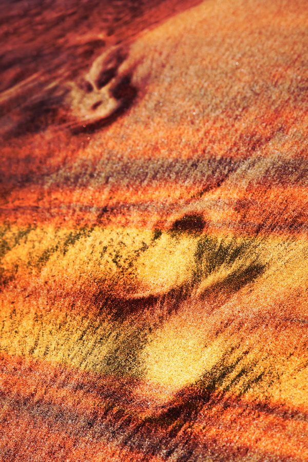 Abstract-Footpath-in-Sand