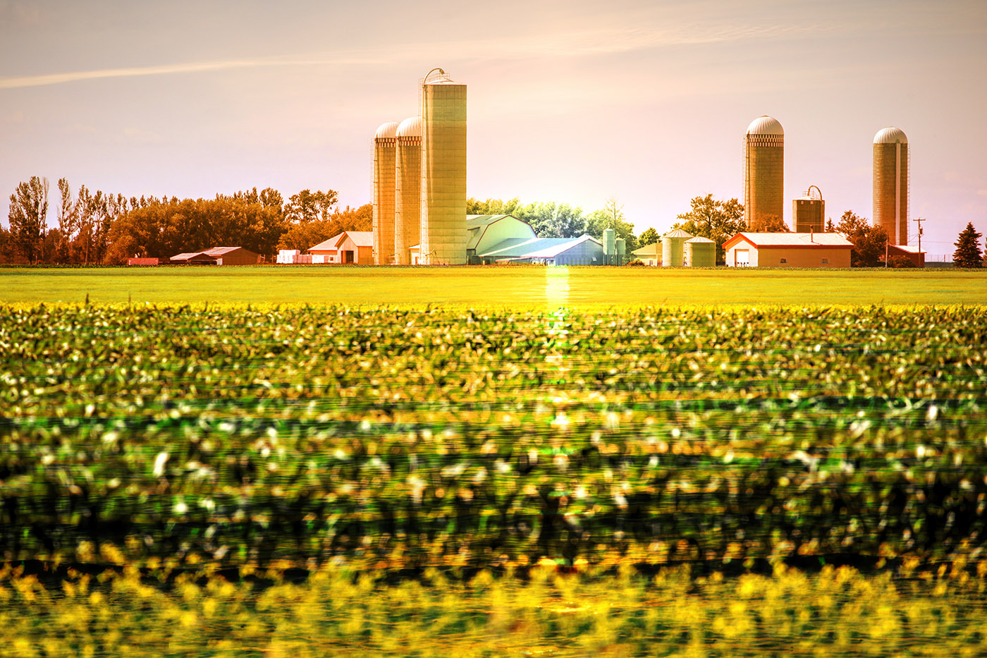 Modern Farmland and Agriculture Real Estate Stock Image